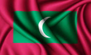Как правильно заполнить иммиграционную карту Мальдив?