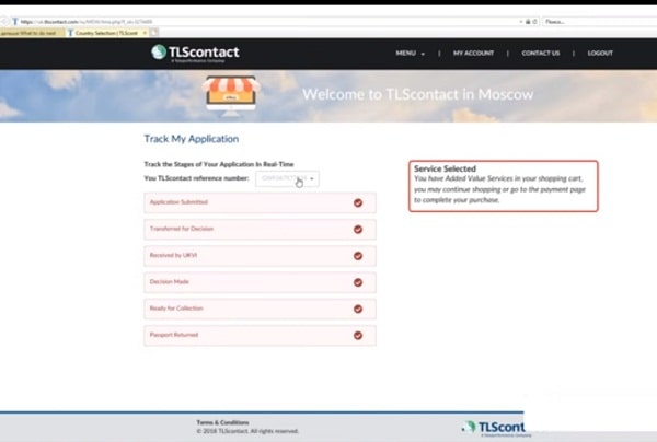 Проверка готовности визового документа онлайн