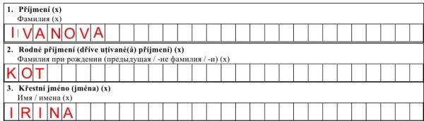 анкета на чешскую визу