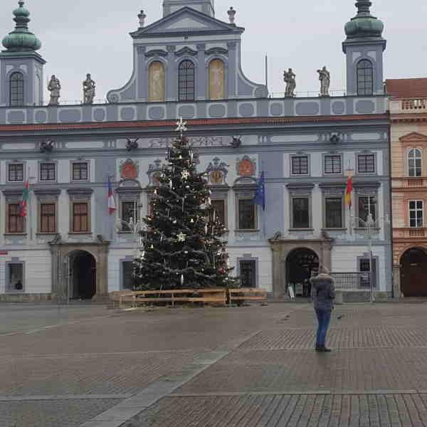 На работу в Чехию после коронавируса