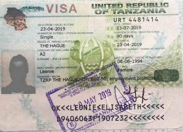 деловая виза в Танзанию